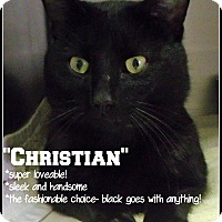 Adopt A Pet :: Christian - Muskegon, MI