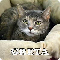 Adopt A Pet :: Greta - Carencro, LA