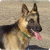 Adopt A Pet :: Fletcher - Pike Road, AL