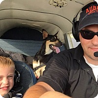 Adopt A Pet :: PAWS - Mahopac, NY