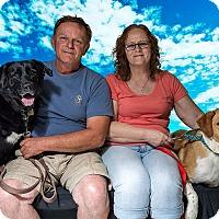 Adopt A Pet :: Roos - Adopted 08/05/2017 - Livonia, MI