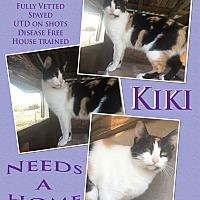 Adopt A Pet :: Kiki - Hearne, TX