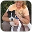 Photo 2 - Pit Bull Terrier Mix Puppy for adoption in San Diego, California - Parker