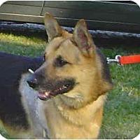 Adopt A Pet :: Kelly - Pike Road, AL