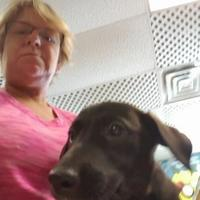 Adopt A Pet :: OPAL - Kiln, MS