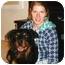 Photo 2 - Rottweiler Dog for adoption in Darlington, Maryland - Cody/Blitz