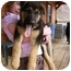 Photo 3 - German Shepherd Dog Puppy for adoption in Elmwood, Tennessee - Ben