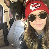Adopt A Pet :: Penny - Nashville, TN