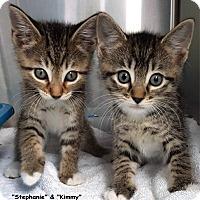 Adopt A Pet :: Stephanie & Kimmy - Key Largo, FL