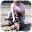 Photo 1 - Rottweiler Dog for adoption in Santa Barbara, California - Maya