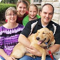 Adopt A Pet :: La La - Plain City, OH