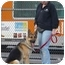 Photo 4 - German Shepherd Dog Dog for adoption in Los Angeles, California - Dodger von Dillenburg