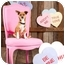 Photo 3 - Basenji/Chihuahua Mix Dog for adoption in Portland, Oregon - Trixie