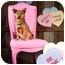 Photo 3 - Corgi/Sheltie, Shetland Sheepdog Mix Dog for adoption in Portland, Oregon - Tulip