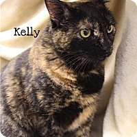 Adopt A Pet :: Kelly - Foothill Ranch, CA