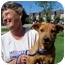 Photo 2 - Labrador Retriever/Australian Cattle Dog Mix Puppy for adoption in Olive Branch, Mississippi - Susie Q