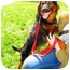 Photo 3 - Sheltie, Shetland Sheepdog/Australian Shepherd Mix Dog for adoption in Alexandria, Virginia - Chester