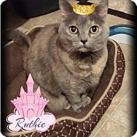 Adopt A Pet :: Ruthie - McDonough, GA