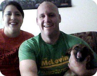 Australian Cattle Dog Mix Puppy for adoption in Plain City, Ohio - Aero (Pete)