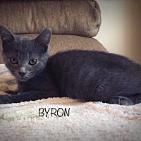 Adopt A Pet :: Byron - Homewood, AL