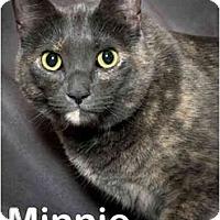 Adopt A Pet :: Minnie (video) - Portland, OR