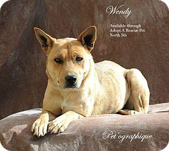 Shepherd (Unknown Type) Mix Dog for adoption in Las Vegas, Nevada - Wendy