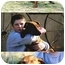 Photo 1 - Redbone Coonhound/Labrador Retriever Mix Puppy for adoption in Buffalo, New York - Rudyard and Jaspar