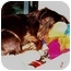 Photo 4 - Dachshund Dog for adoption in Colleyville, Texas - Jamie