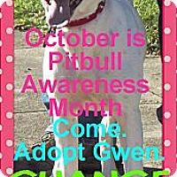 Adopt A Pet :: Gwen - Peru, IN