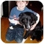 Photo 2 - Border Collie Dog for adoption in Fayetteville, Arkansas - Lucky