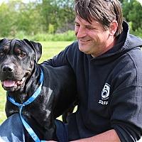 Adopt A Pet :: Garth-Prison Graduate - Elyria, OH