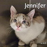 Adopt A Pet :: Jennifer - Pleasantville, NJ