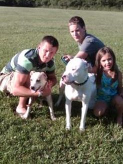American Pit Bull Terrier Mix Dog for adoption in Marion, Indiana - RUBY FORMERLY LAYLA