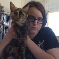 Adopt A Pet :: Hazel - Henderson, KY