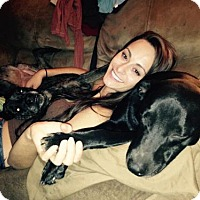 Adopt A Pet :: Liberty - Decatur, GA