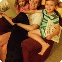 Adopt A Pet :: Flint - Lewisville, IN