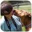 Photo 2 - Doberman Pinscher Dog for adoption in Greensboro, North Carolina - Salsa