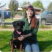 Adopt A Pet :: Diesel - Sandston, VA