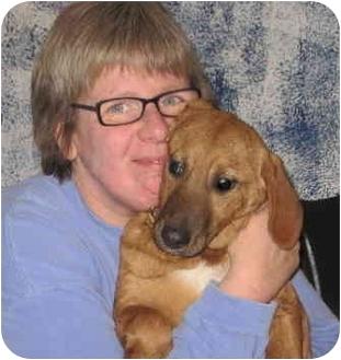 Golden Retriever/Beagle Mix Puppy for adoption in Buffalo, New York - Marti