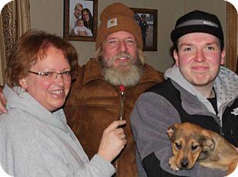 Hound (Unknown Type) Mix Puppy for adoption in Northville, Michigan - Harriet-A15-ADOPTED