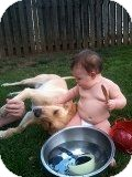 Golden Retriever Mix Dog for adoption in Alliance, Nebraska - Sadie
