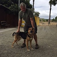 Adopt A Pet :: Ripken - San Diego, CA