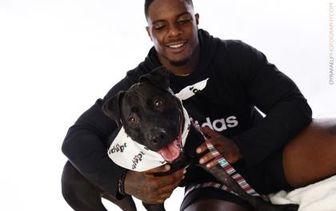 Labrador Retriever Mix Dog for adoption in Miami, Florida - Duke