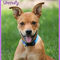 Adopt A Pet :: Wendy - Elburn, IL