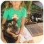 Photo 2 - Golden Retriever/German Shepherd Dog Mix Dog for adoption in El Cajon, California - Hobie