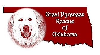 Great Pyrenees Dog for adoption in Tulsa, Oklahoma - FOSTER HOMES NEEDED