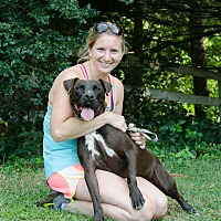 Pit Bull Terrier Mix Dog for adoption in Midlothian, Virginia - Happy
