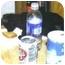 Photo 3 - Domestic Shorthair Kitten for adoption in Lake Charles, Louisiana - Austin