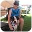 Photo 1 - American Pit Bull Terrier Mix Dog for adoption in Blanchard, Oklahoma - Prada