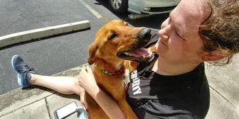 German Shepherd Dog Mix Dog for adoption in Davie, Florida - Scooby
